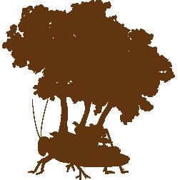 Logo | Schrieverswold